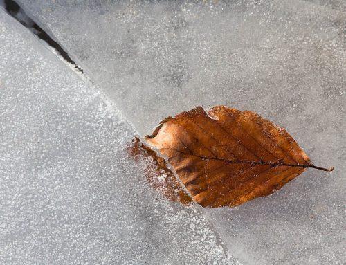 Tischner na adwent: O ociężałości ducha